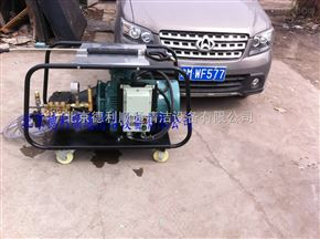 DL系列500公斤防爆www.5596.com