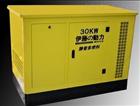 YT30REP伊藤动力大型30KW多燃料汽油发电机组