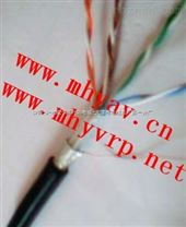 計算機儀表電纜DJVVR_DJVVP_DJVVRP