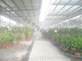苗圃绿色植物喷雾加湿