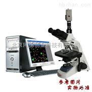 管材、管件炭黑分散度分析仪