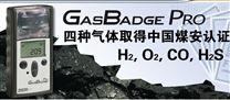 CYH25礦用氧濃度分析儀英思科GB60