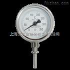 双金属温度计WSS-572