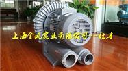 耐高温高压环形风机