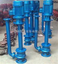 YWP係列不鏽鋼雙管液下排汙泵