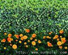 山西省大城市适用于园林绿化印花防寒布
