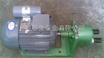 S係列微型齒輪泵S型齒輪油泵
