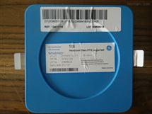 GE WHATMAN聚四氟乙烯PTFE过滤膜TE38 Membrane Filters