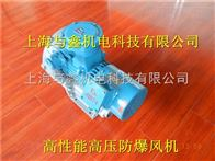 防爆风机-高压防爆鼓风机-变频防爆高压风机-防爆鼓风机生产厂家