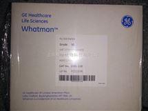 GE WHATMAN沃特曼Grade 91湿强级定性滤纸110mm直径1091-110