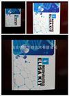 人血管内皮生长因子(VEGF)ELISA试剂盒