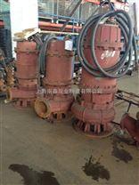 大型排污泵