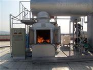 等離子高溫醫療醫療專用垃圾焚燒爐