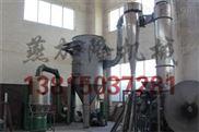 电厂桨叶污泥烘干机