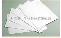 WHATMAN fusion 5胶体金滤纸A4纸大小8151-6621