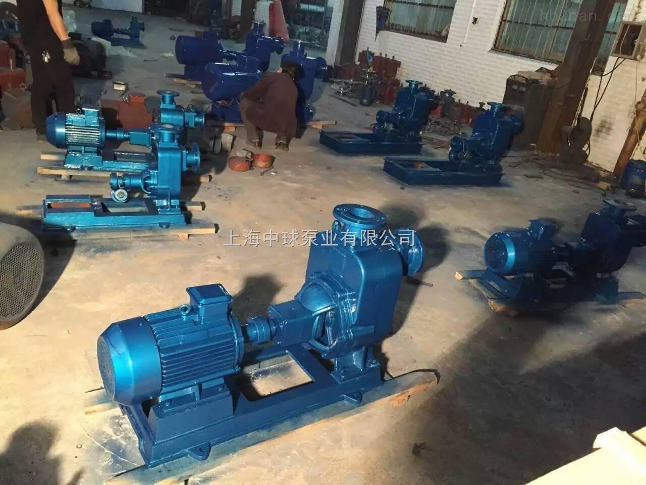 50ZW20-35自吸泵