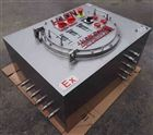 不锈钢防爆配电箱,上海防爆不锈钢配电箱