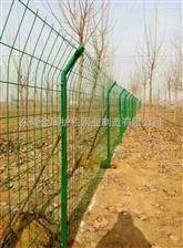 绿化铁丝护栏.绿化浸塑护栏