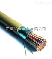 PVV22信號電纜