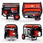 汽油发电机组YT3600DC-2