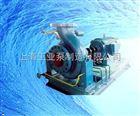 高温热水循环泵价格