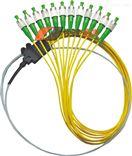 12芯束状尾纤电信级型号