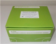 鱼I型胶原蛋白抗体ELISA检测试剂盒