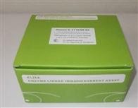 小鼠抗肌内膜抗体IgAELISA检测试剂盒