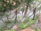湖北景区人造雾系统