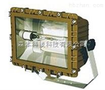 SBF6104-YQL50免维护节能防水防尘防腐应急灯
