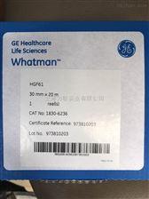 1830-6236whatman HGF61玻璃纤维纸带PM2.5/10专用30MM*2M