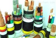 ZR-YJV22-0.6/1KV-3*185+1鎧裝電纜