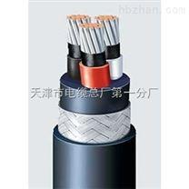 ZR-DJYPVP阻燃計算機電纜