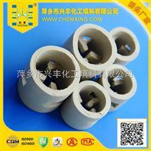 冷却塔陶瓷鲍尔环,反应塔用填料,吸收塔填料