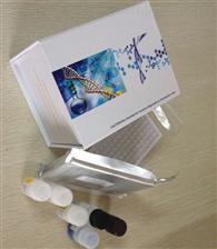 人凝血酶受体ELISA试剂盒