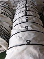 干灰散裝機內外伸縮下料袋節能環保安裝方便