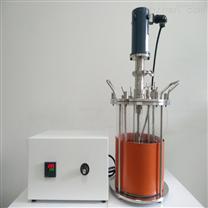 玻璃发酵罐