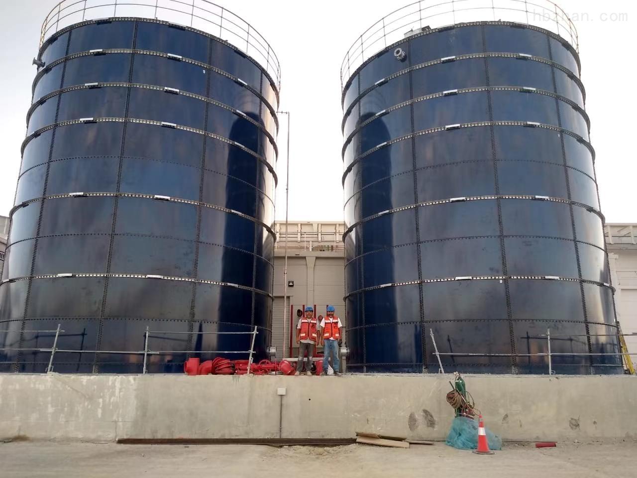 雀巢集团饮用水水罐项目