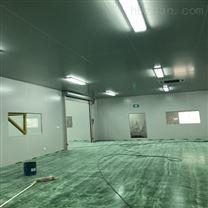 日照制药厂GMP洁净车间设计施工标准