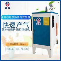 亮普小型全自动6KW 采暖取暖 电蒸汽发生器