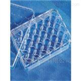 3337康寧 Corning 細胞培養板 24孔板