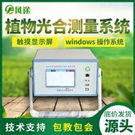 FT-GH30植物光合速率测定仪
