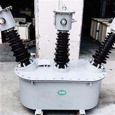 甘肃省35KV油浸式高压计量箱