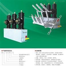 10KV永磁高压真空断路器户外系列
