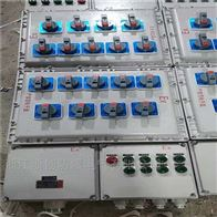BXMD锅炉风机防爆配电箱BXMD-T220V