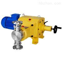 DZ-D柱塞式计量泵