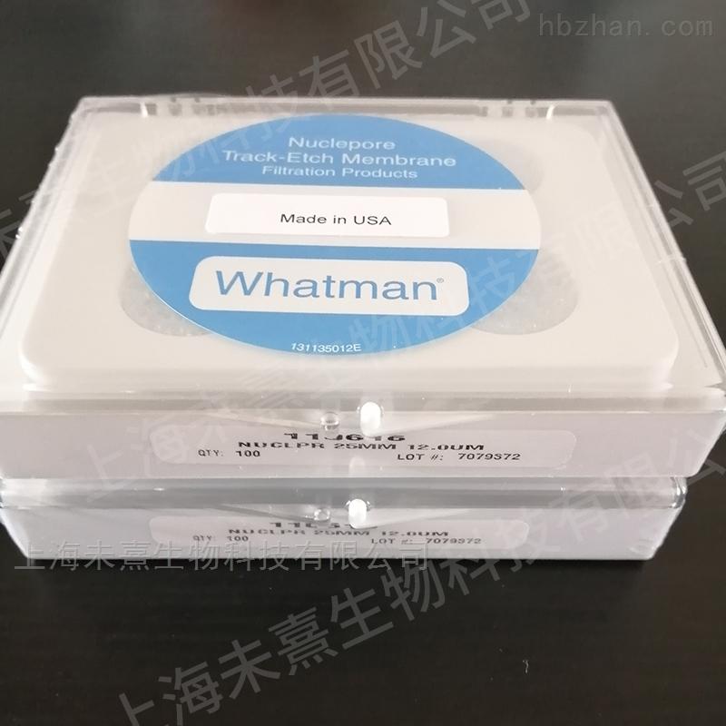沃特曼whatman径迹蚀刻膜12um孔径 PC膜