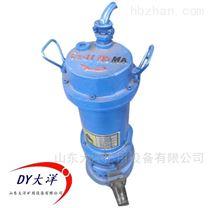 防爆型污水潜水泵