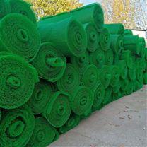 绿化生态护坡植被网