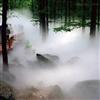 园林雾化景观系统 雾森景观